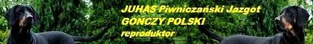 * GOŃCZY POLSKI  *  JUHAS Piwniczański Jazgot *